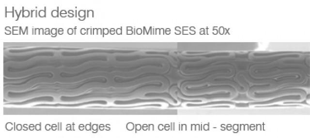 Hybrid Cell Design