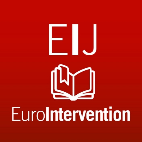MeriT- I Publciation in Euro Intervention